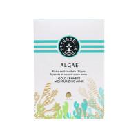 安尚米啦黄金海藻面膜补水保湿紧致毛孔修护熬夜肌肤舒缓清洁6片